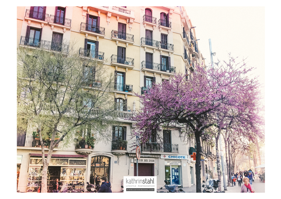 Barcelona, Lifestyle, Photographer, Kathrin Stahl006