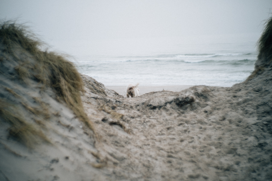 Dänemark, Reise, Fotograf, Kathrin Stahl (5 von 26)